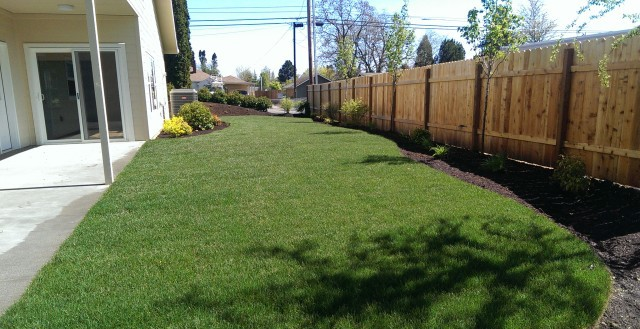 new-construction-landscaping-residential